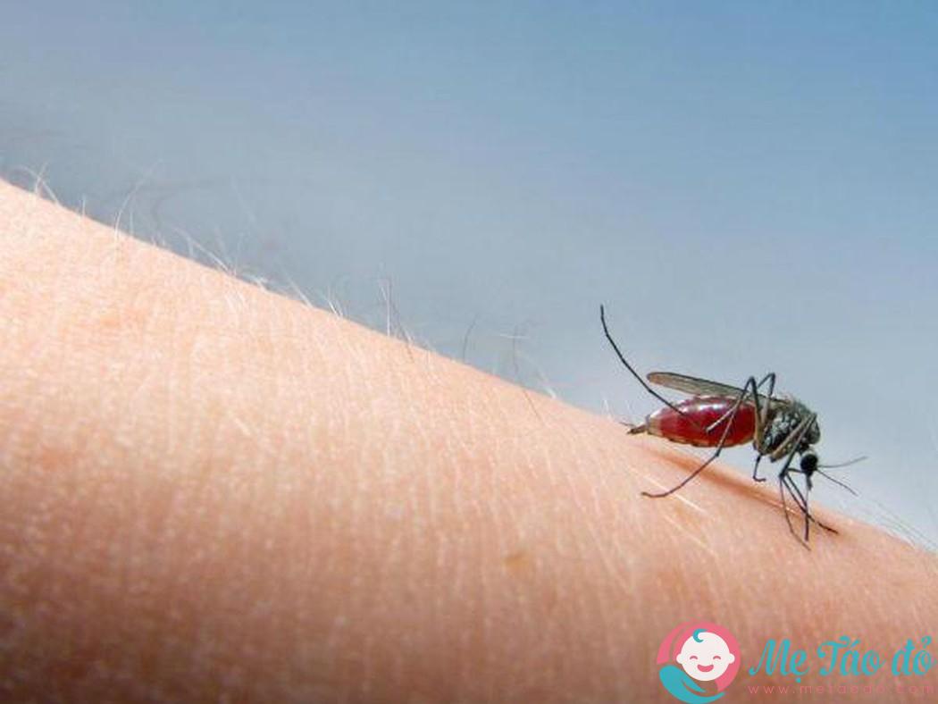 cách trị muỗi đốt cho trẻ sơ sinh
