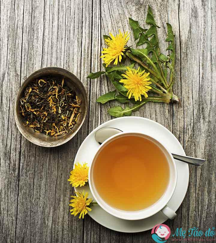 trà bồ công anh tốt cho sức khỏe